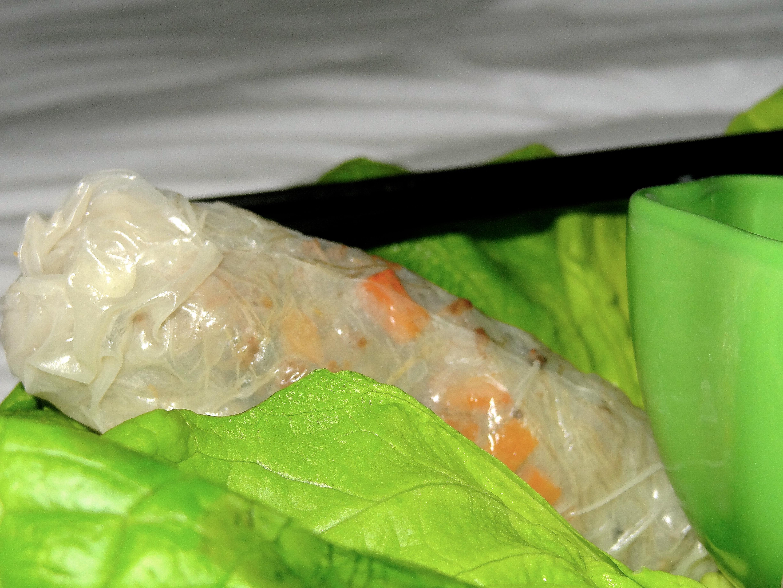 Nems au boeuf carottes