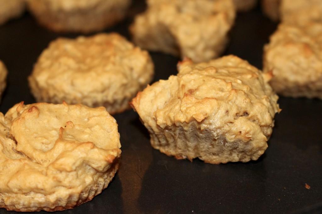 Muffins à la Whey à la vanille